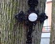 Żeliwny krzyż z nagrobka dziecięcego przytwierdzony do jednego z drzew