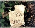 Fragmenty płyt nagrobnych na terenie dawnego kirkutu w Lęborku