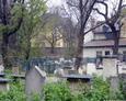 Macewy na żydowskim cmentarzu Remuh w Krakowie