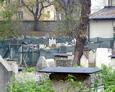 W tle widoczna część cmentarza, która poddana jest renowacji