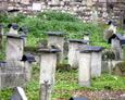 Macewy w głębszej części cmentarza