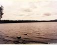 Kamienica Królewska - Jezioro Junno