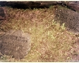 Szymbark - lapidarium poświęcone pierwszym polskim osadnikom
