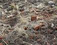 Porozrzucane stare cegły mogą potwierdzać, że niegdyś było na tym terenie więcej obiektów