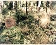 Nagrobki członków rodziny Strobell na cmentarzu w Lesiakach