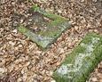 Zdwastowany nagrobek /widoczna kamienna tablica bez płyty inskrypcyjnej/