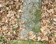 Przewrócony kamienny krzyż z mogiły dziecięcej