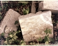 Sasino - pozostałości współczesnych płyt nagrobkowych