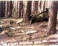 Stilo/Osetnik - teren, na którym powinien znajdować się cmentarz