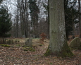 Wejście na teren cmentarza w Wolinii