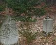 Dobrze zachowane kamienie nagrobne z widoczną inskrypcją