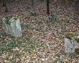 Bardziej zdewastowana część cmentarza