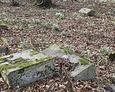 Zniszczone fragmenty pomników