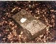 Podkomorzyce - znaleziony fragment porcelanowej tabliczki