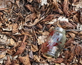 Na pobliskim terenie można odnaleźć wiele dawno wypalonych zniczy