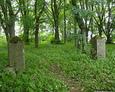 Brama główna cmentarza w Świetlinie