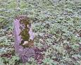 Kolejna podstawa pod płytę epitafiną w kształcie drzewa