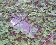 Zniszczona płyta epitafijna