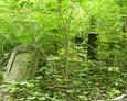 Widok ogólny na cmentarz