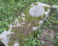 Przewrócony kamień nagrobny Fritza Skibbe