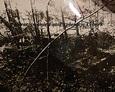 Widok na zniszczone, zdewastowane nagrobki na terenie ewangelickiego cmentarza