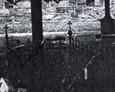 Żeliwne krzyże na terenie przykościelnego cmentarza w Przodkowie (zdjęcia pochodzą najprawdopodbniej z lat 80tych)