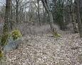 Ścieżka prowadząca na cmentarz