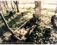 Rama mogiły z kamiennym postumentem pod tablicę w kształcie pnia drzewa