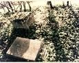 Fragment zdewastowanego nagrobka oraz przewrócona kamienna podstawa pod żeliwny krzyż