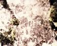 Fragment kolejnej odnalezionej płyty nagrobnej na cmentarzu w Świchowie