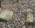 Pozostałości kamieni nagrobnych