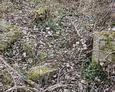 Zniszczone i zdewastowane nagrobki