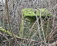 Fragment zdewastowanego nagrobka