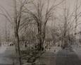 Ogólny widok na teren cmentarza w Białogardzie