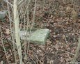 Przewrócony kamienny postument (Janowice)
