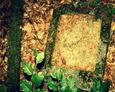 Przewrócona kamienna płyta bez tablicy inskrypcyjnej