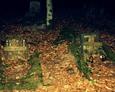 Kamienne ramy zachowanych nagrobków/widoczne drewniane krzyżyki