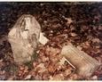 Cmentarz mennonicki w Pogorzelicach