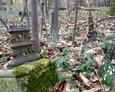 Ułamany żeliwny krzyż z kamienną podstawą