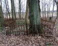 Zachowane żeliwne ogrodzenia nagrobne