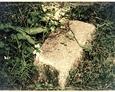 Cmentarz na trasie Ciekocinko-Kurowo