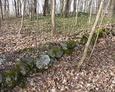 Kamienne obwałowanie cmentarza