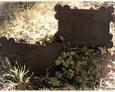 Damnica - cmentarz komunalny (zachowane żeliwne tablice)