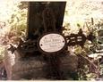 Damnica - cmentarz komunalny (ażurowy krzyż pochodzący z dziecięcej mogiły)