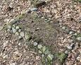 Dziecięcy nagrobek usypany z kamieni
