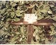 Drewniany krzyż z białą tabliczką inskrypcyjną na dawnym cmentarzu w Bukowinie