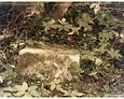 Pozostałości nagrobków na dawnym cmentarzu w Bukowinie