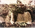 Zagórzyca - pozostałości kamieni nagrobnych pochodzących z dawnego cmentarza