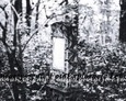 Mogiła z kamienną płytą (widoczna tablica inskrypcyjna)