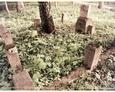 Szczenurze - wschodnia część cmentarza